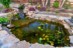 Free Pond Royalty Free Stock Image - 31478806