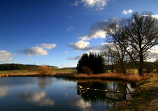Pond. Meadow,about the pond,cross wind,cloud rock,cloud drift,heap,countryside Royalty Free Stock Image