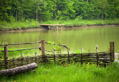 Pond. The pond in the forest,reflections on the water. Springtime in Ukraine Stock Image