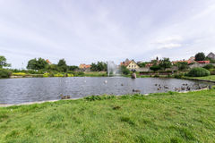 Pond in Almedalen, Visby, Sweden. With birds and cloudy sky Stock Photo