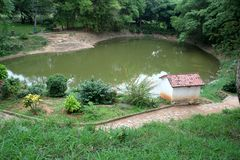 Pond amidst Greenery Royalty Free Stock Photography