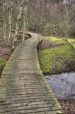 Pond on Amrum Stock Photography