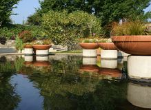 Pond at Arboretum. With Plants in Containers Stock Photos