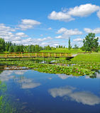 Pond in arboretum. Stock Photos