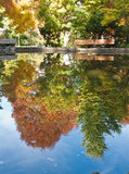 Pond in Autumn. Still water of a pond with colorful autumn leaves reflected in the water at Lithia Park in Ashland, Oregon Stock Photo