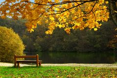 Pond in autumn. With foliage and wood bench Stock Photo
