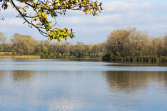 Pond in autumn. In broad daylight Stock Photography