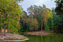 Pond in autumn forest Stock Photo