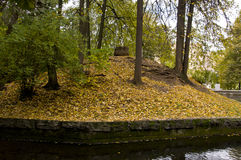 Pond in autumn park Stock Photo