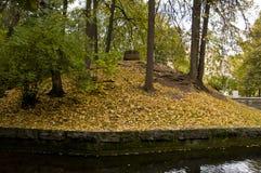 Pond in autumn park Stock Photo