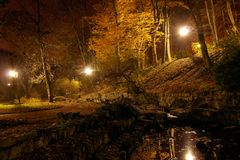 Pond in autumn park at night Royalty Free Stock Image
