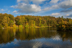 Pond in the autumn park Stock Photos