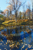 Pond in autumn park. Royalty Free Stock Photography