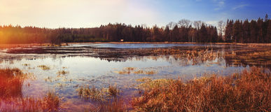 Pond autumn Stock Images