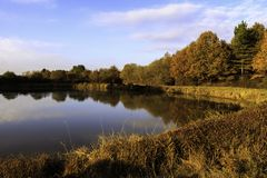 Pond in autumn with sunrise over background of frozen water, trees in November colors with blue sky and cloud royalty free stock image