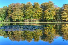 Pond with autumn trees on the Veluwe at St. Hubertus Hunting Lodge Royalty Free Stock Image