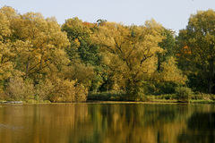 Pond in autumn with water reflection, Fermany Royalty Free Stock Photo