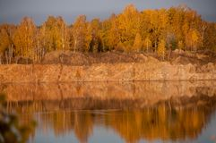 Pond on the background of autumn forest Royalty Free Stock Photo