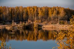 Pond on the background of autumn forest Stock Image