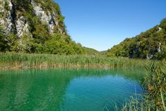 Pond bank landscape in bright summer day in Plitvice, Croatia. Green pond bank landscape in bright summer day in Plitvice, Croatia Stock Photography