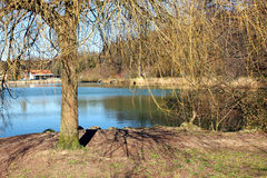 Pond bank Stock Photos