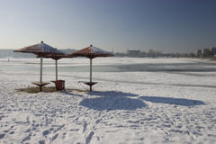 Pond beach at winter Royalty Free Stock Photos