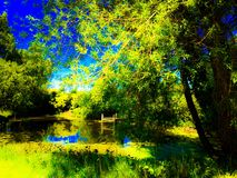 Pond. Beautiful pond overgrown with bushes Royalty Free Stock Photo