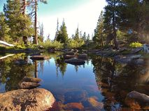 Pond. Beautiful reflection of a pond in the emigrant wilderness Royalty Free Stock Photography