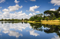 Pond and blue sky and white cloud Stock Photography
