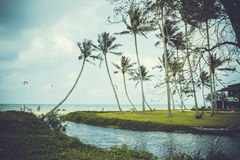 Pond, boat and sea among palm trees Royalty Free Stock Photos