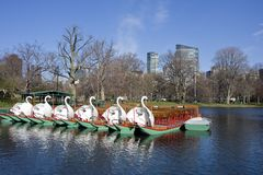Pond in Boston Common garden Royalty Free Stock Photo