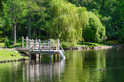 Pond in the Botanical Park of Palanga Stock Photos