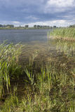 Pond in Brandenburg, Linum Royalty Free Stock Image