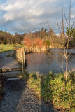 Pond And Bridge Stock Images