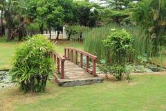 Pond on Bridge Royalty Free Stock Image