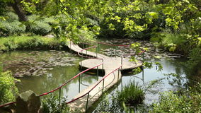 Pond With A Bridge stock video footage