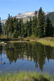 Pond in Callaghan Valley - Vertical. Pond and Mount Callaghan in Callaghan Valley. British Columbia Stock Photo