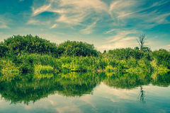 Pond with calm waters Royalty Free Stock Images