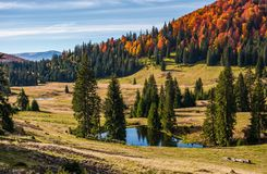 Pond in Carpathian mountains in autumn Royalty Free Stock Images