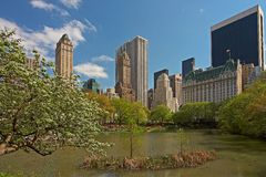The Pond in Central Park Stock Photos