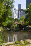 The Pond in Central Park, editorial Stock Photos