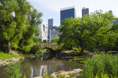 The Pond in Central Park, editorial Royalty Free Stock Photography