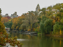 A pond in Central Park. A pond in the Fall in Central Park of New York City Royalty Free Stock Photography