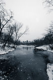 The Pond at Central Park in the Winter and skyscrapers in backgr Stock Image