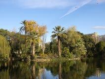 Pond Ciutadella Park Stock Image
