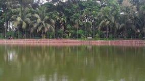 Pond stock photo