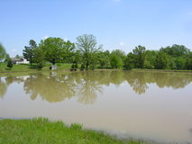 Pond on country property. A pond on a country property Stock Photos