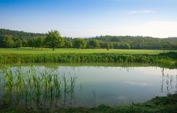 Pond on countryside Stock Photography