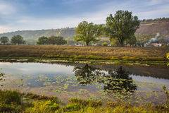 Pond in the countryside in autumn Stock Photography