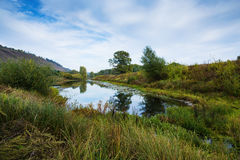 Pond in the countryside in autumn Royalty Free Stock Photo